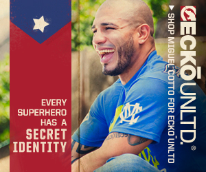 cotto_banner300x250_final